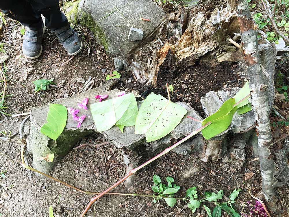 mukuna Waldkindergarten